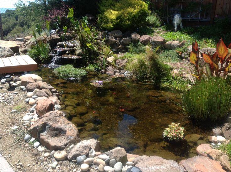 Rock Pond Ponds Pinterest