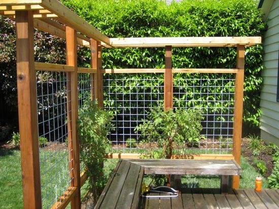 Pin by Tim Lowke on Gardening Pinterest