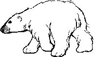 Polar Bear, Polar Bear What Do YOu See  with printable templates
