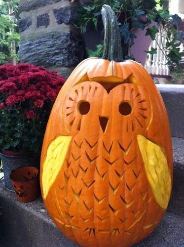 Cute owl pumpkin carving pinterest