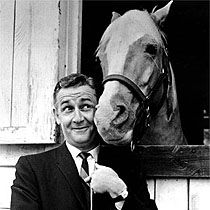 Mr Ed and Wilber