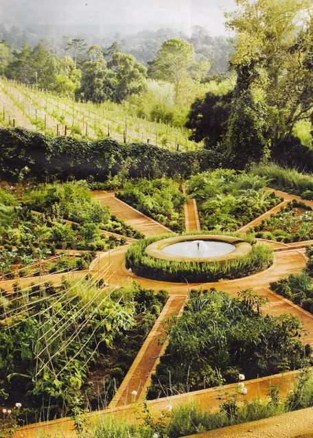 Potager layout in the garden pinterest for Vegetable garden designs south africa