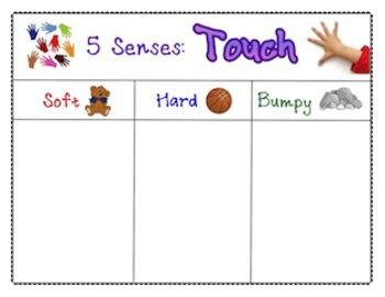 Senses Activities