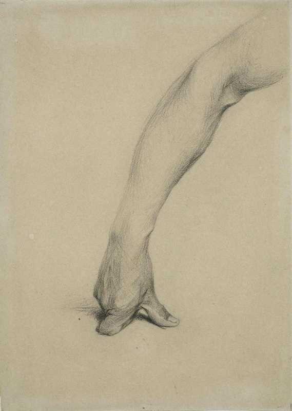 dibujo brazo mano puño apoyado en el suelo