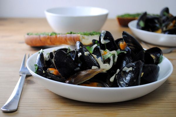 Steamed mussels (an aphrodisiac!) in Pastis recipe - perfect for ...