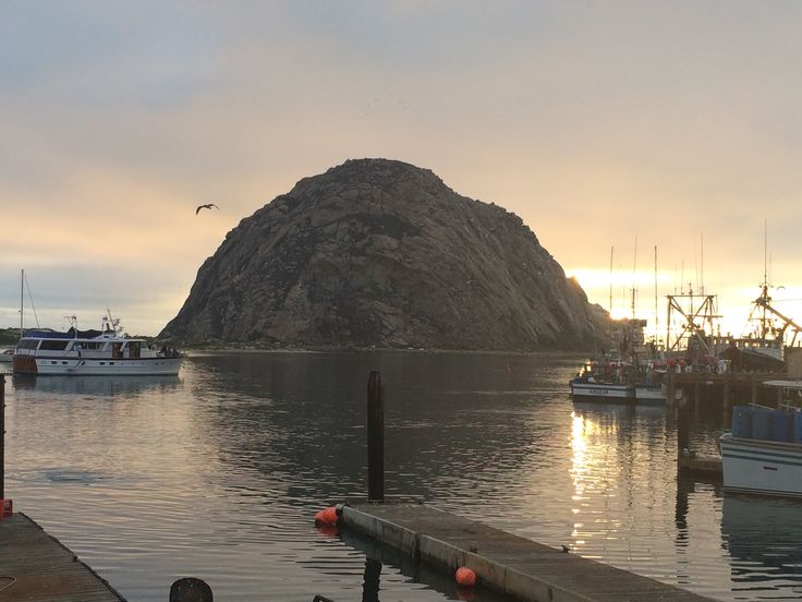 Pin by deanna derosa on california road trip pinterest for Morro bay fishing