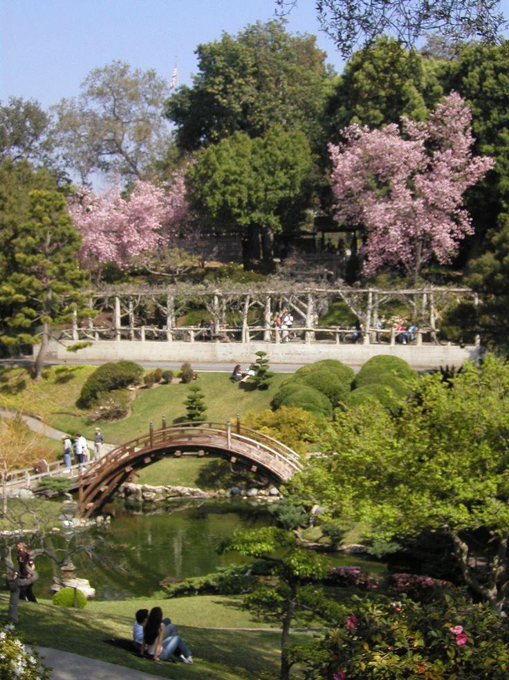 Huntington botanical gardens for The huntington
