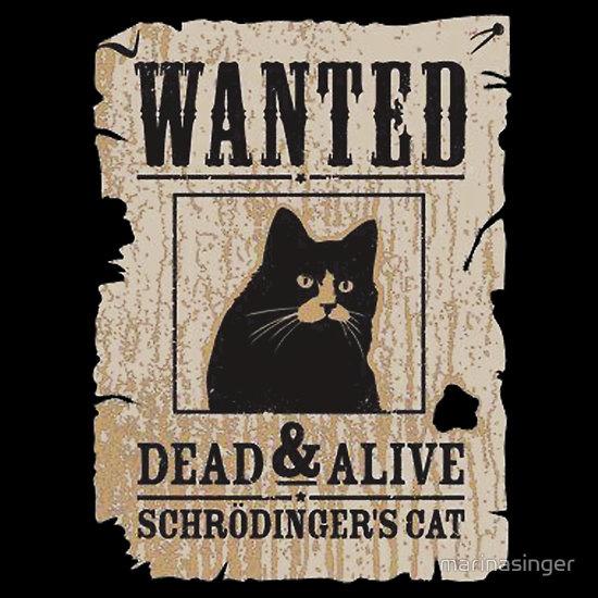 Schrodinger's Cat | Sci Fi & Fantasy | Pinterest