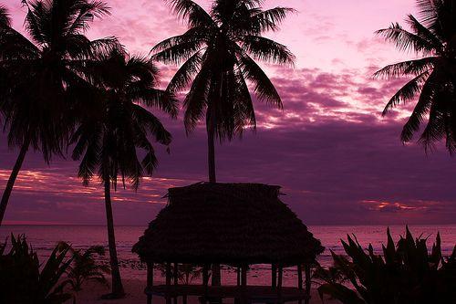 Dad's home island of Savaii, Western Samoa
