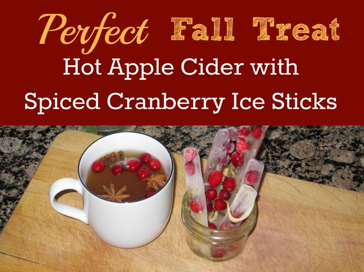 Hot Apple Cider With Spiced Cranberry Ice Sticks