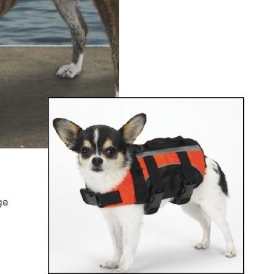 Aquatic Dog : Guardian Gear Aquatic Dog Life Jacket - ZM954