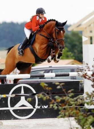 another Cezch warmblood jumper for sale... we gotta say we're always a fan of the red hunt coat. lovely photo!