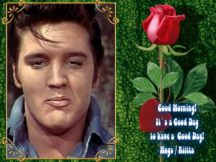 Good morning   Good Mornig/night quotes with Elvis image   Pinterest