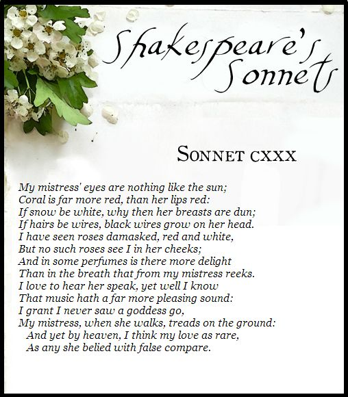 a literary analysis of sonnet 138 by william shakespeare