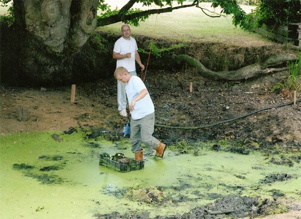 Ugh! #garden #disaster! | Small Garden Ideas | Pinterest