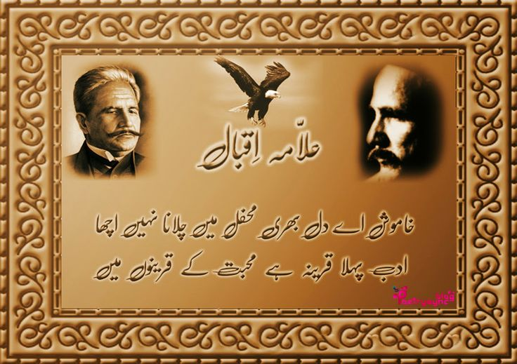 pin by poetry sync on allama iqbal pinterest