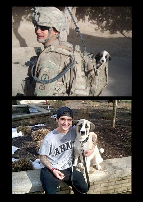 two loves...soldiers & animals