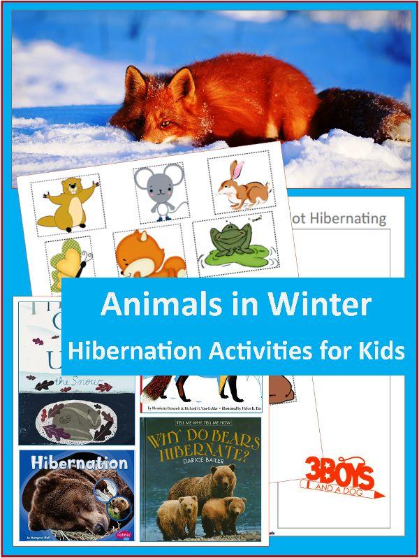 Animals that hibernate for kids