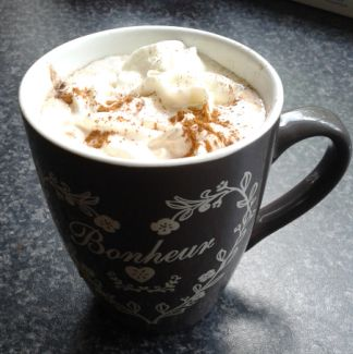 CINNAMON MAPLE SYRUP HOT CHOCOLATE too delicicous. -heat 1 cup milk ...