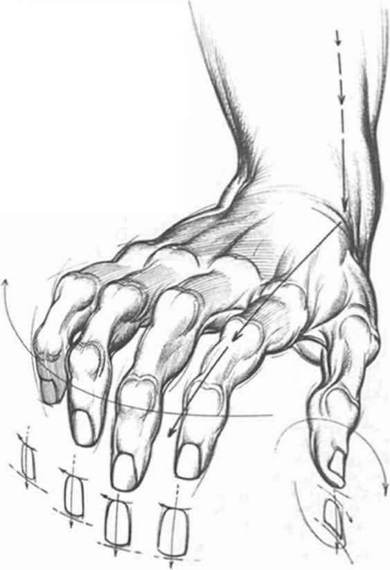 Pose manos huesudas