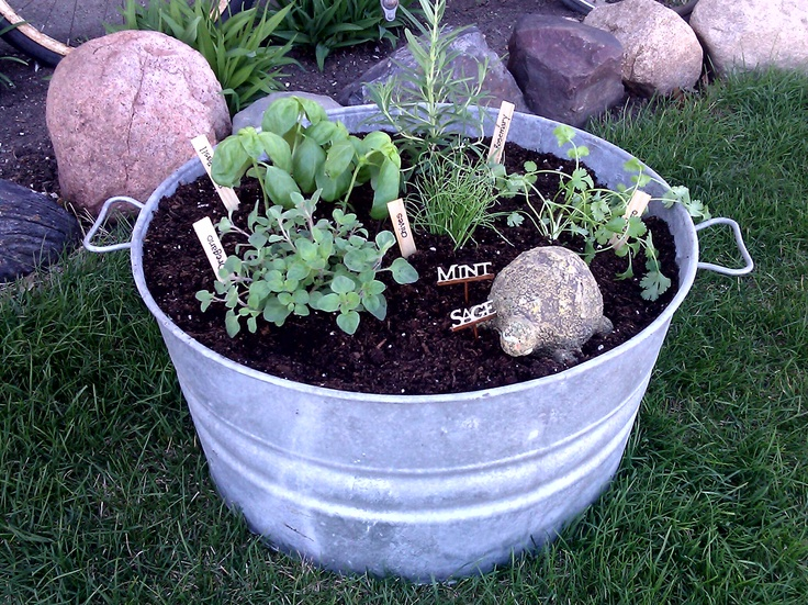 container herb garden for the patio