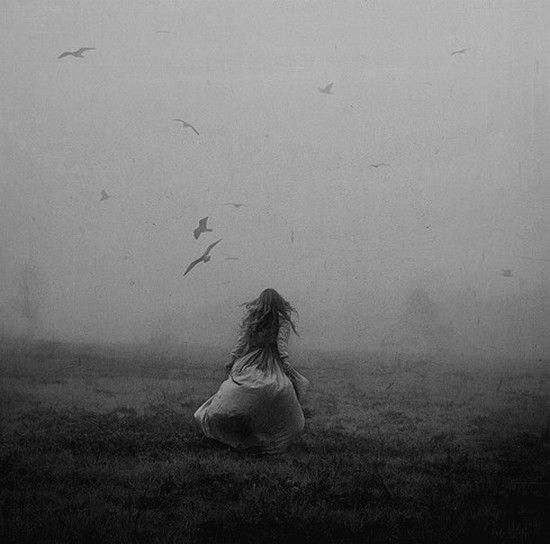 run away. - THIS IS WHAT I'VE ALWAYS WANTED TO DO...RUN THROUGH A FIELD OF FOG AND RAVENS!!!