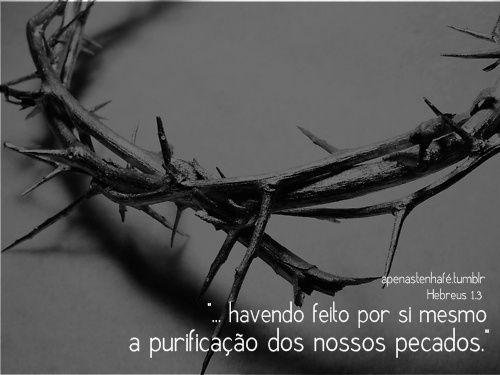 Cristo levou nossos pecados sobre si