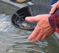 """MAKES GREAT HOLIDAY GIFT"" ~ 12 Pounds Gold Panning Paydirt $60.00 w/ FREE SHIPPING"