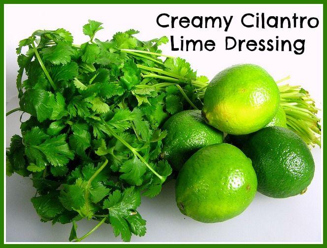 Creamy Cilantro Lime Dressing Recipe   Happy To Be Raw