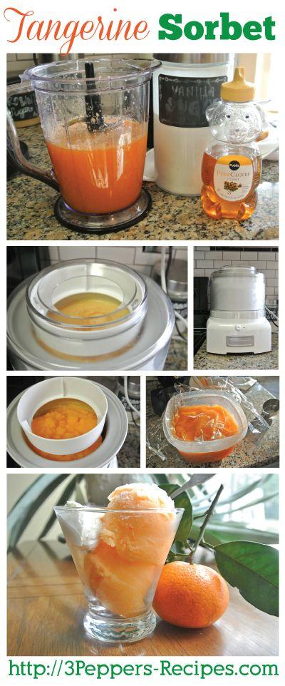 Tangerine Sorbet recipe and tutorial. Delicious winter fruit. #recipe ...