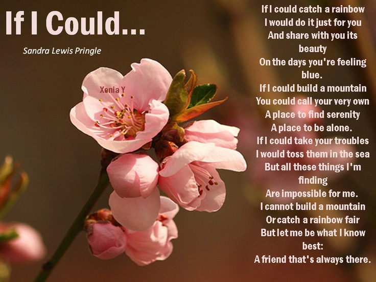 If i could catch a rainbow quot poetry the essence of life pin