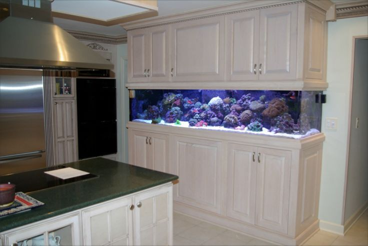 Kitchen remodel fish tank in cabinets animals pinterest for Fish tank cabinets