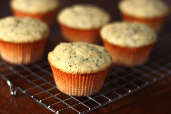 Glazed Lemon Poppy Seed Muffins | biscuits, breads & muffins | Pinter ...