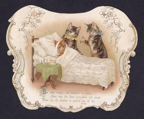 Large Embossed Victorian Die Cut Card Helena Maguire  Kitten Bed Scrap