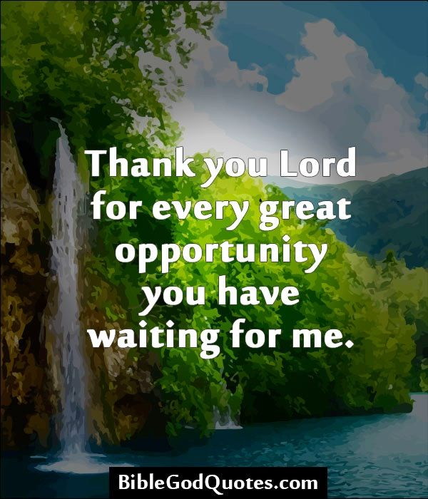 thank you for opportunity quotes  quotesgram