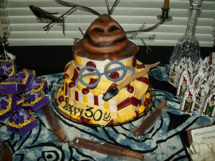 harry potter 30th birthday
