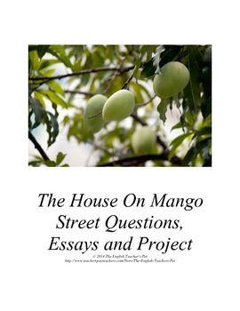 Essay on the house on mango street