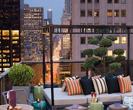 The rooftop of the Peninsula Hotel on 5th Avenue in NYC. THE VIEW . . .