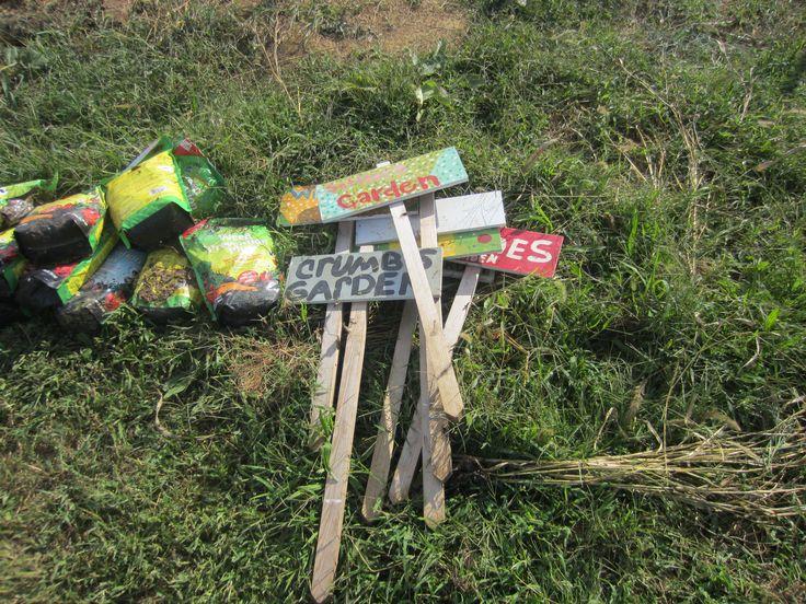 Stakes School Garden Ideas Pinterest