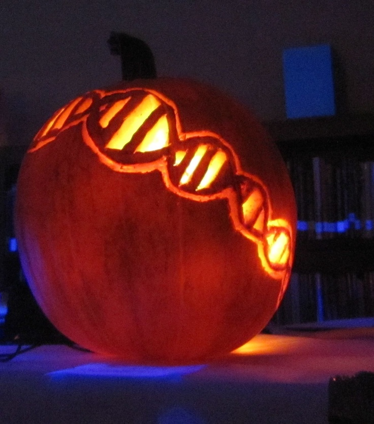 Pumpkin Carving Ideas Science