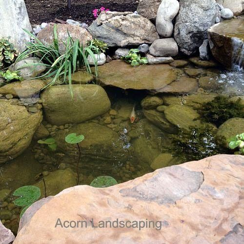 Amazing backyard waterfall fish pond with paver patio for Patio fish pond
