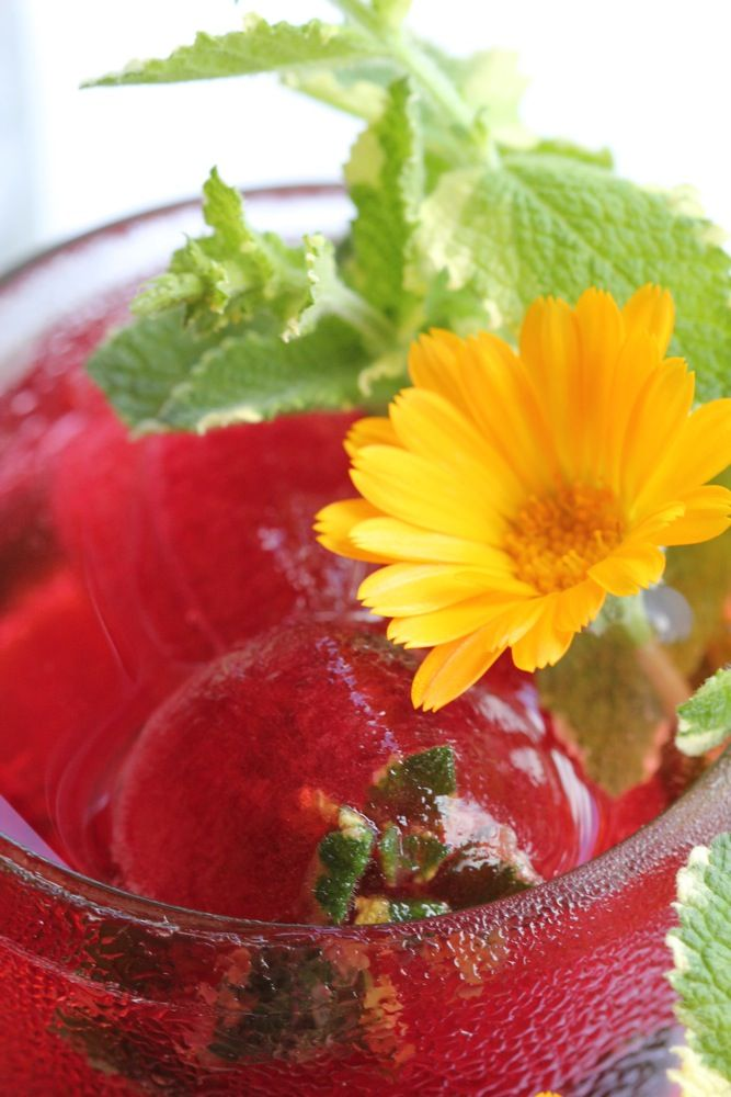 hibiscus mint tea with hibiscus ice cubes