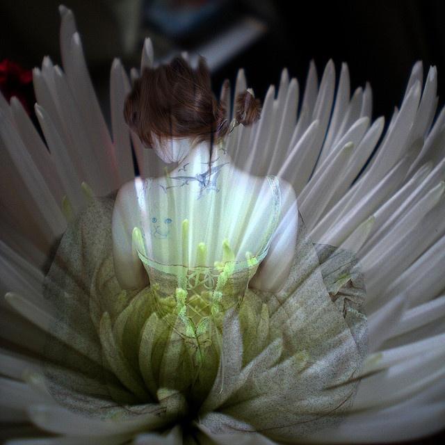 #jessica #mcclintock {vintage JM via Delicate Flower by Carolina Wildflower, via Flickr}