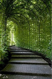 this would be cool to walk through