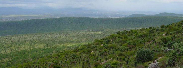 Parque Nacional El Cimatario. Queretaro