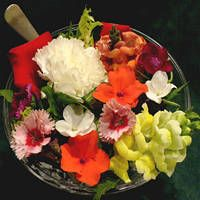 Chart of edible flowers, with photos and recipes.