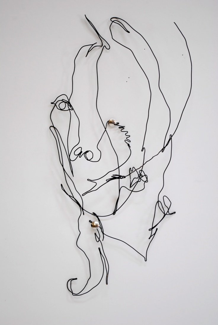 Contour Line Drawing With Wire : Pin by midland visual arts on line pinterest