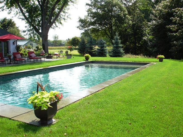 Inground swimming pool design outdoor decor pinterest for Gunite pool design ideas