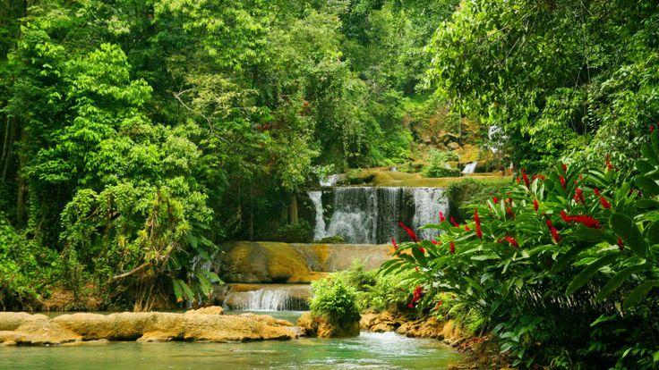 Exotic waterfall..   exotic waterfalls   Pinterest