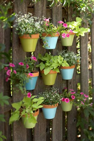 Paint pots and hang on the fence, use plastic pots if terracotta too heavy.